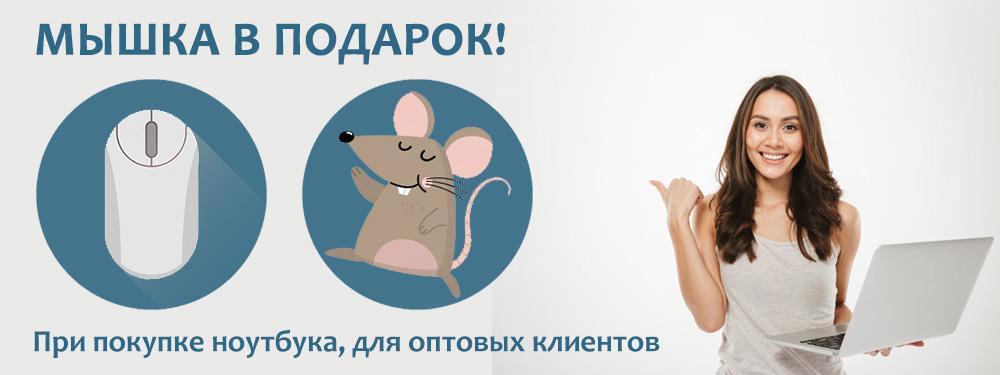 Купи ноутбук - получи мышку в подарок! Оптовая акция